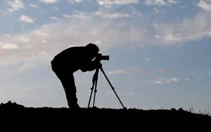 Naturalistic Photographer